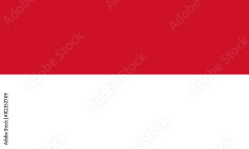 Flag of Indonesia Wallpaper Mural
