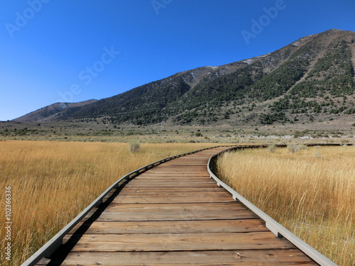 fototapeta na ścianę Follow wooden boardwalk path through prairie - landscape photo