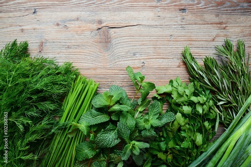 Photo Herbs