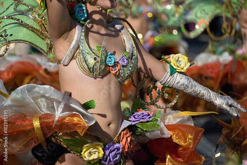 In de dag Rio de Janeiro A woman in costume dancing on carnival