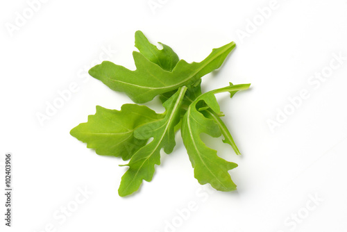 Photo fresh arugula leaves