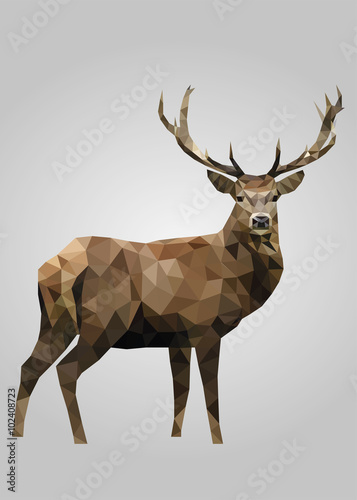 Fotografie, Obraz Deer animal standing and looking vector