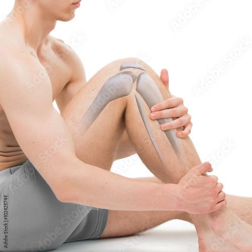 anatomia-kosci-knee-samodzielnie-na-bialym-tle