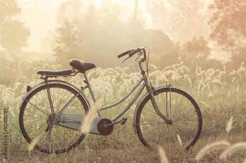 Deurstickers Fiets bike on a grass flower in the morning