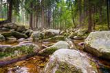 Potok w górach