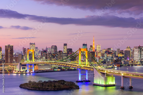 Tokyo BaySkyline - 102443990