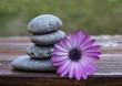 flor y torre de piedras