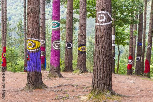 Photo El bosque de Oma, Reserva de la Biosfera de Urdaibai, Vizcaya (España)