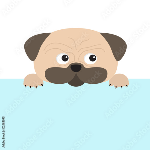 Poster Retro sign Pug dog mops and paw. Cute cartoon character. Flat design. Isolated. Wite background.
