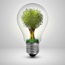 Tree In A Light Bulb Ecology C...