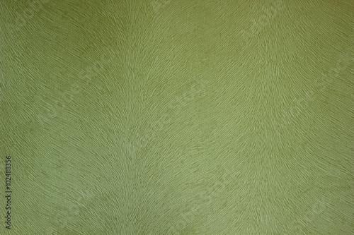 Fabric texture green bieber Poster