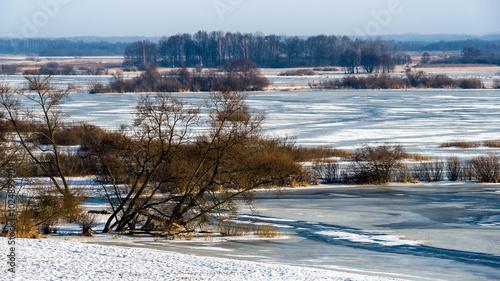 Obrazy na płótnie Canvas Biebrza zimą