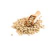canvas print picture - lentils