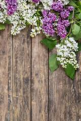 Panel Szklany Na drzwi Lilac flowers