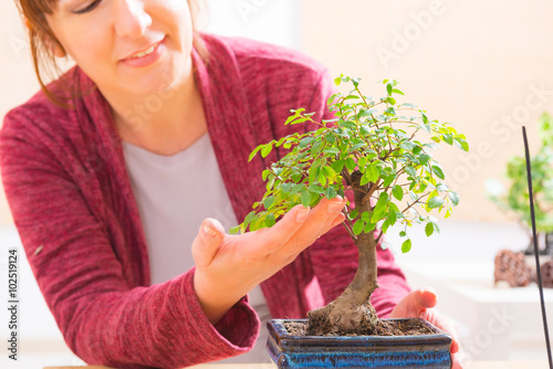 Stickers pour porte Bonsai Woman with bonsai tree