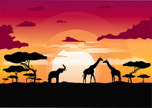 African Sunset In The Savannah With Silhouette Of Animals