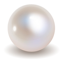 Perłowy wektor na białym tle.