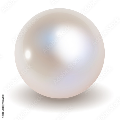 Pearl vector on white background. Canvas Print