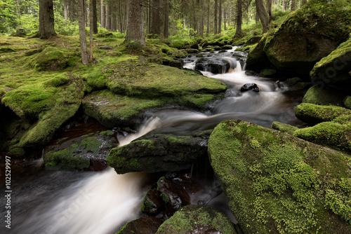 Valokuva  Small river