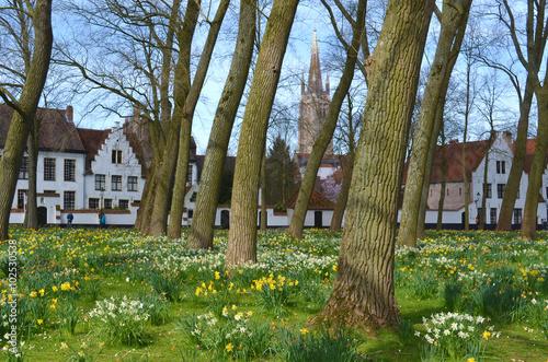 Deurstickers Brugge Dans le jardin du Béguinage , à Bruges , au printemps