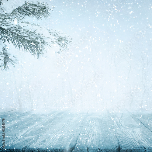 Photo Stands Light blue Winter path