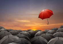 Red Umbrella Fly Out From Crowds Of Black Umbrellas