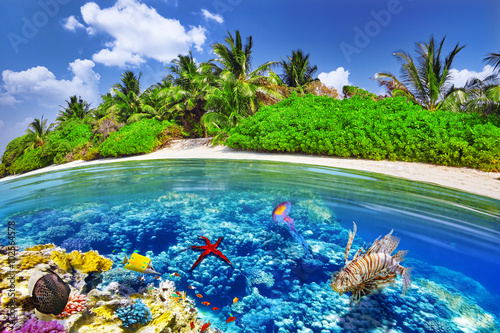 Photo Stands Dark blue Tropical island and the underwater world in the Maldives. Thoddo