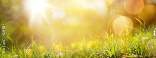 Staande foto Lente art abstract spring background or summer background with fresh g
