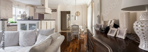 Fotografie, Tablou  Living room with light kitchenette