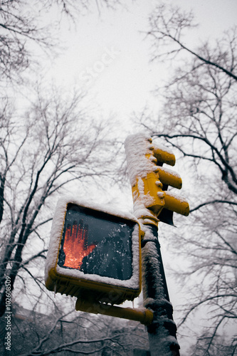 Traffic Light Covered with Snow in New York City