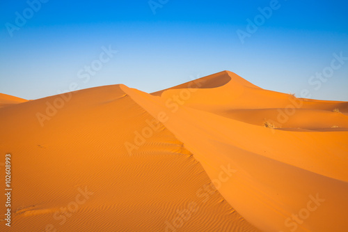 Keuken foto achterwand Rood paars Sand Dunes in the Sahara Desert, Merzouga, Morocco