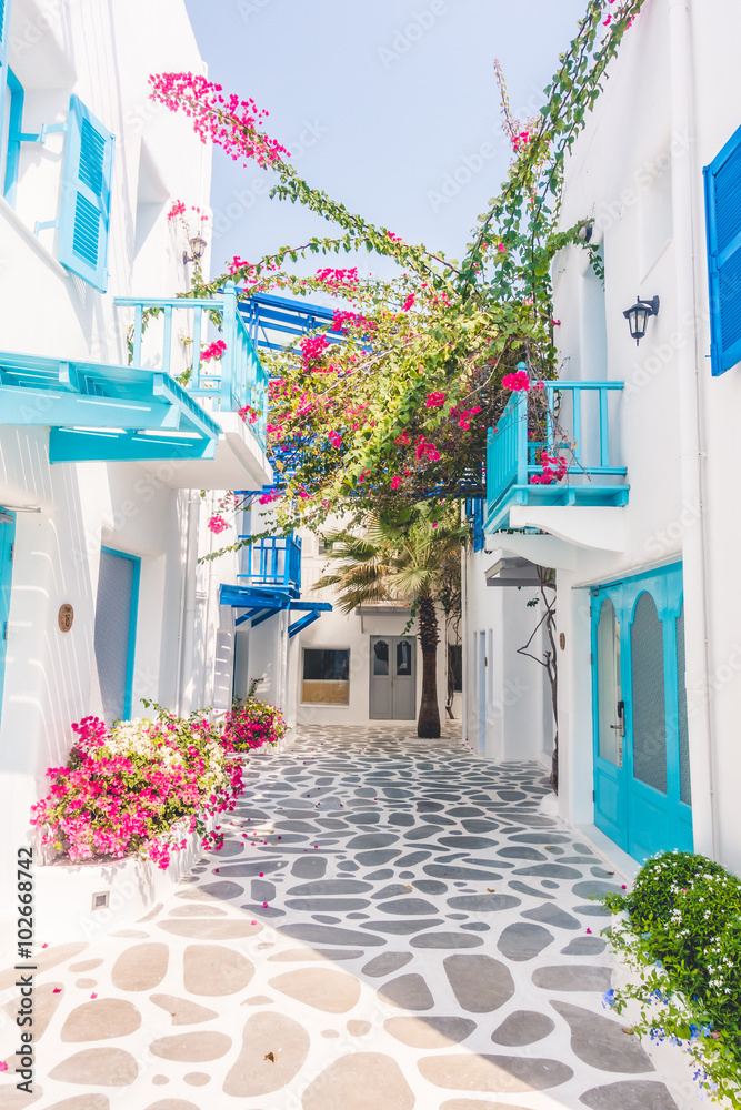 Fototapeta Beautiful architecture with santorini and greece style