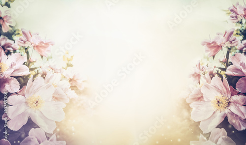 Foto op Canvas Bloemen Lovely floral pastel color background, banner