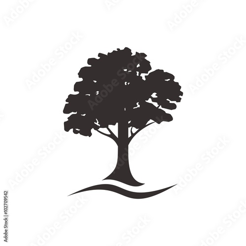 Fotografía  oak tree logo