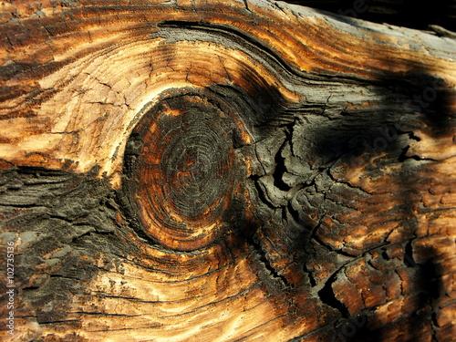 Obraz Belka drewniana - fototapety do salonu