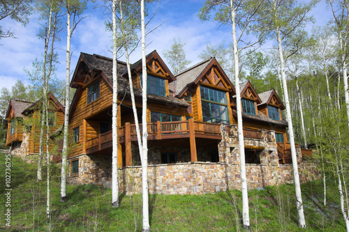 Fotografie, Obraz  Mountain resort house