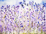 Lavender with dots. The dabbing technique gives a soft focus effect due to the altered surface roughness of the paper. - 102738165