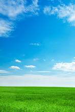 Blue Sky And Field Of Fresh Green Grass