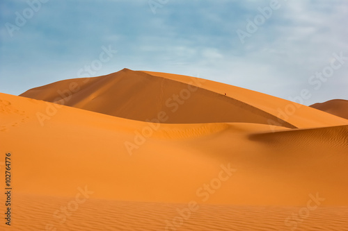 Papiers peints Desert de sable Huge sand dunes of the Sahara Desert