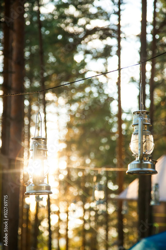 Photo  forest lamp