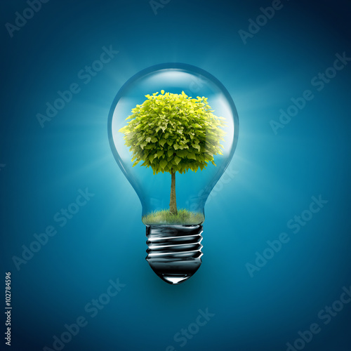 Fotografiet tree inside light bulb