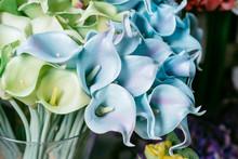 Silk Flowers Series