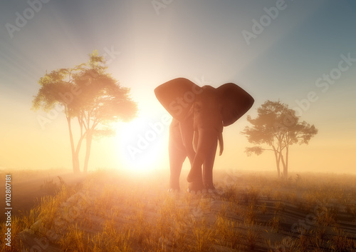 einzelne bedruckte Lamellen - Elephant (von Kovalenko I)
