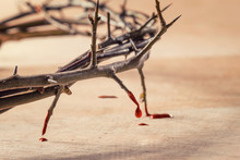 Crown Of Thorns With Blood Dripping. Christian Concept Of Suffer