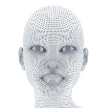 Woman Face In Wireframe Lines Isolated On White.