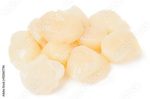 Pile of peeled raw scallops Fototapeta