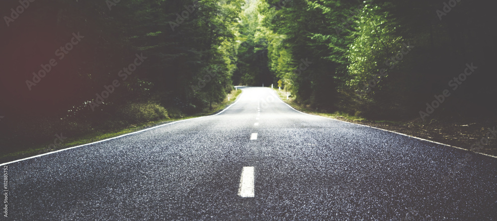 Fototapety, obrazy: Summer Country Road With Trees Beside Concept