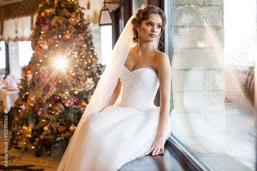 Beautiful bride posing near window, christmas tree background Poster
