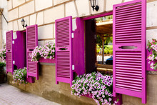 Pink Shutters And Petunia Flowers On Window