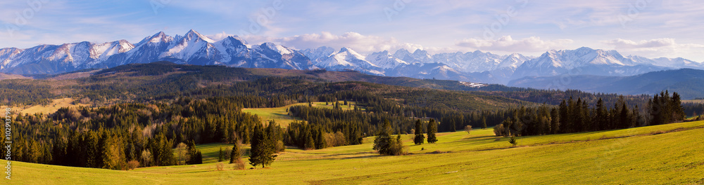 Fototapety, obrazy: Panorama of snowy Tatra mountains in spring, south Poland